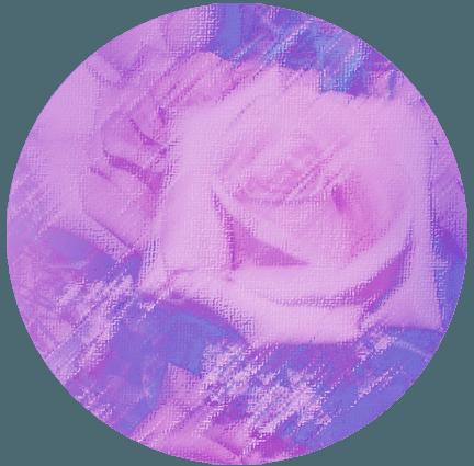 RosesCircle