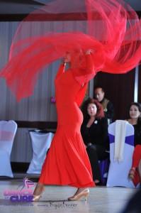 DFTC Gala 2014 Show